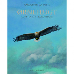 ØRNEFLUGT: Kunsten at se på rovfugle