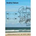 Andria Falcon, utopi eller virkelighed: paradigmeskiftet og dets implikationer for arkitektur