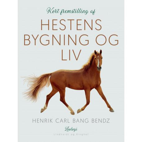 Kort fremstilling af hestens bygning og liv
