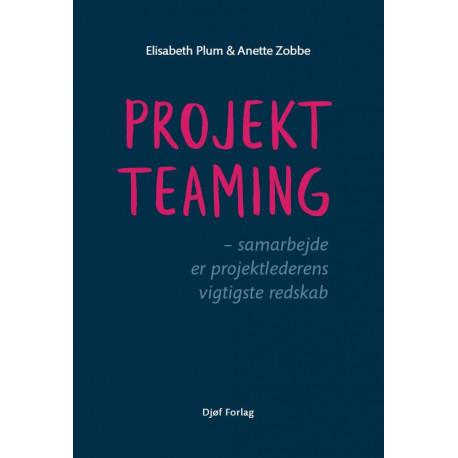 Projektteaming: Samarbejde er projektlederens vigtigste redskab