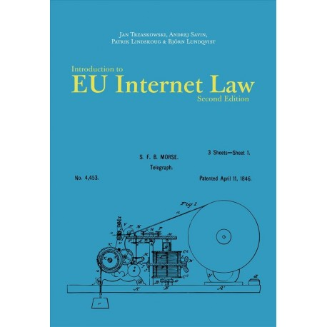 Introduction to EU Internet Law