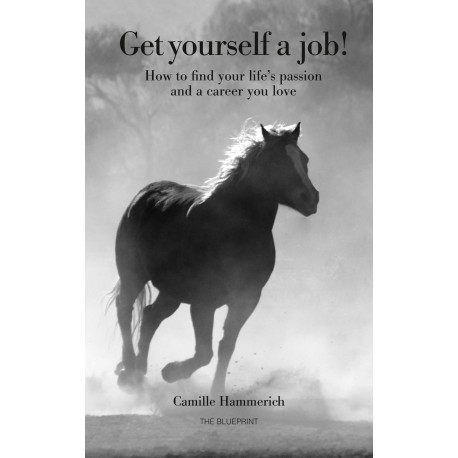 Get yourself a job: How to find your lifes passion and a career you love