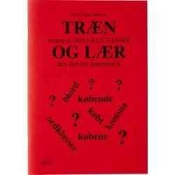 Træn brugen af Den Lille Danske og lær den danske grammatik