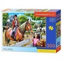 Hestefold - 300 brikker