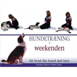 Hundetræning i weekenden: Alt hvad din hund skal lære