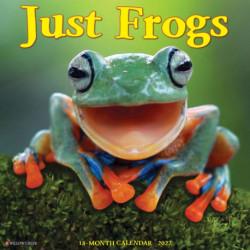 Just Frogs 2022 Wall Calendar