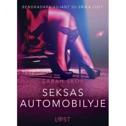 Seksas automobilyje - seksuali erotika
