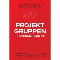 Projektgruppen - hvordan gør vi?: En håndbog til universitetsstuderende