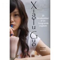 20 brudstykker af en hungrende ungdom: roman