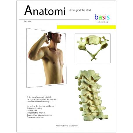Anatomi - basis - Arbejdsbog 1: Arbejdsbog 1 - bevægeapparatets anatomi - kom godt fra start