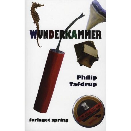 Wunderkammer: et katalog over forsøg og fejltagelser