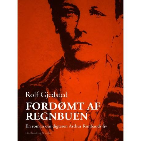 Fordømt af regnbuen: en roman om digteren Arthur Rimbauds liv