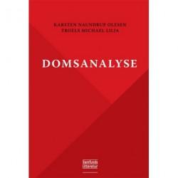 Domsanalyse