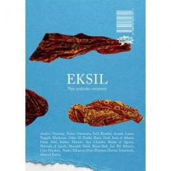 EKSIL: Nye arabiske stemmer