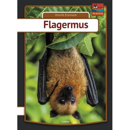 Flagermus