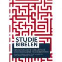 Studiebibelen: Den autoriserede oversættelse med indledninger og kommentarer