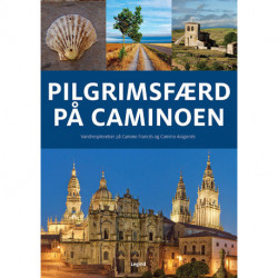 Pilgrimsfærd på Caminoen: Vandreoplevelser på Camino Francés og Camino Aragonés