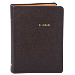 Bibelen - mellemformat: i brunt ægte skind med guldsnit