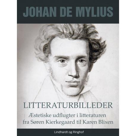Litteraturbilleder: Æstetiske udflugter i litteraturen fra Søren Kierkegaard til Karen Blixen