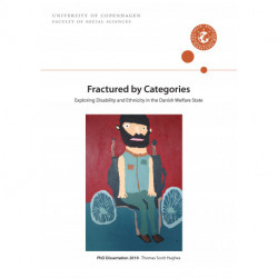 Fractured by Categories: Exploring Disability and Ethnicity in the Danish Welfare State