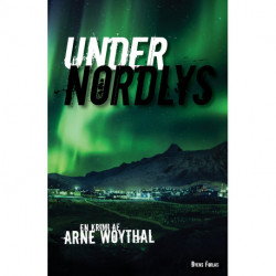 Under nordlys