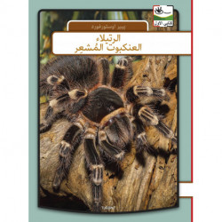 Fugleedderkop - arabisk