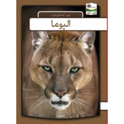 Puma - arabisk
