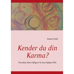 Kender du din Karma?: Hvordan dine tidligere liv kan hjælpe DIG