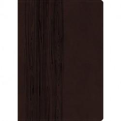Bibelen på Hverdagsdansk, premium kunstlæder, brun