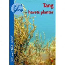 Tang – havets planter: Vild med Viden FOKUS nr. 9