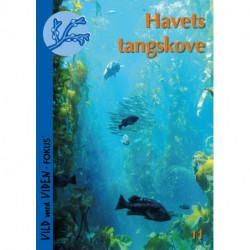 Havets tangskove: Vild med Viden FOKUS Nr. 11