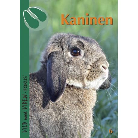 Kaninen: Vild med Viden FOKUS Nr. 6