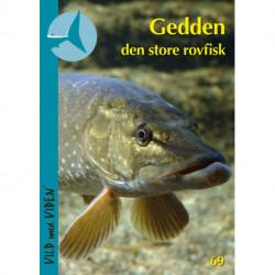 Gedden – den store rovfisk: Vild med Viden Nr. 69