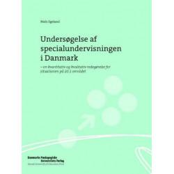 Undersøgelse af specialundervisningen i Danmark: en kvantitativ og kvalitativ redegørelse for situationen på 20.1 området
