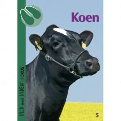 Koen: Vild med Viden FOKUS Nr. 5