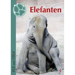 Elefanten: Vild med Viden Nr.  9