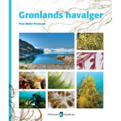 Grønlands Havalger