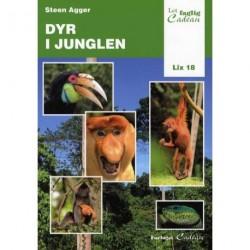 Dyr i junglen