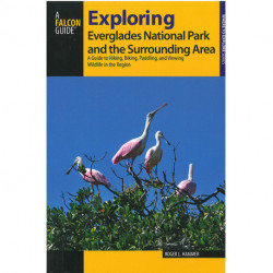 Exploring Everglades National Park and the Surrounding Area: A Guide to Hiking, Biking, Paddling, and Viewing Wildlife