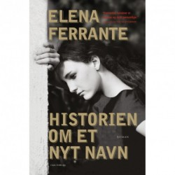Historien om et nyt navn: ungdom (bind 2)