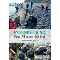 Fossilerne fra Møns Klint