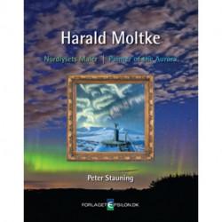 Harald Moltke: nordlysets maler, Harald Moltkes malerier på Danmarks Meteorologiske Institut