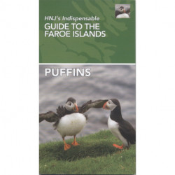 Puffins: HNJ's Indispensable Guide To The Faroe Islands
