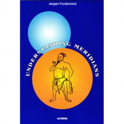 Understanding Meridians