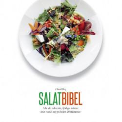 Salatbibel: Alle de lækreste, fyldige salater året rundt og på højst 20 minutter