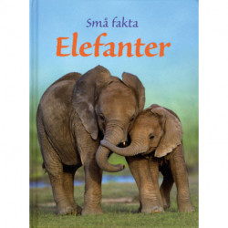 Små fakta: Elefanter