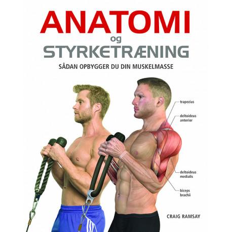 Anatomi og styrketræning: Sådan opbygger du din muskelmasse
