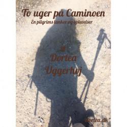 To uger på Caminoen: En pilgrims tanker og oplevelser