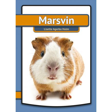 Marsvin