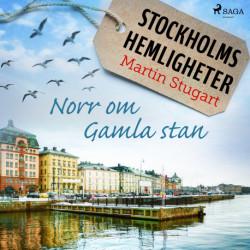 Stockholms hemligheter - Norr om Gamla stan